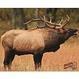 DuraMesh Archery Elk 1 Target, Brown, 25'' x 32''