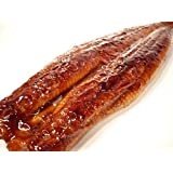 うなぎ蒲焼 特大鰻 1尾 約250gサイズ