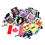 Decal Stickers Coolmate 125 PCS for Car Motorcycle Bicycle Skateboard Laptop Luggage Vinyl Sticker Graffiti Laptop Luggage Decals Bumper,Clear Stickers,Holagram Sticker Sticker