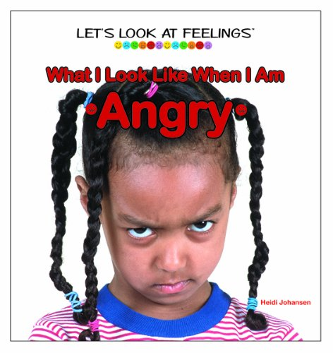 Download What I Look Like When I Am Angry (Let's Look at Feelings) pdf