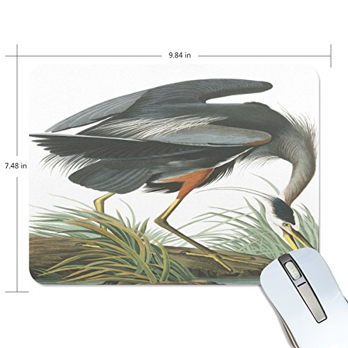 Ye Store Plate Great Blue Heron Lengthen Thickening of the Mouse Pad for Office Games