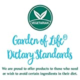 Garden of Life Whole Food Vegetable Supplement - Perfect Food Green Superfood Dietary Supplement - 51TXRuIJ7HL - Garden of Life Whole Food Vegetable Supplement – Perfect Food Green Superfood Dietary Supplement