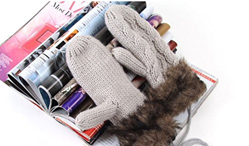[1-Pcs (1 Pair) Smashing Popular Women's Warm Gloves Windproof Wrist Girls Cover Motorcycle Decor Color Light] (Beer Koozie Costume)