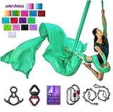 Aerial Silks Deluxe Equipment Set for Aerial Yoga, Aerial Yoga Hammock, Aerial Acrobatic,Circus Arts, Aerial Dance(L:10m W:2.8m (Fruit Green)