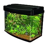Interpet Fish Pod Glass Aquarium Fish Tank including CF1 Cartridge Filter, 48 Litre