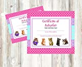 Glam Kitty Cat Pet Adoption Party Supply Theme (Adoption Certificate)
