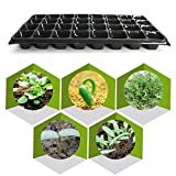 32 Cells Seedling Starter Nursery Pots Trays 10Pcs/Set Seed Germination Plants Propagation Vegetables Farm Garden Tools Black