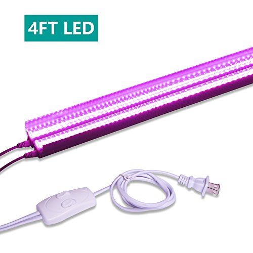 High Output Led Grow Lights Plants