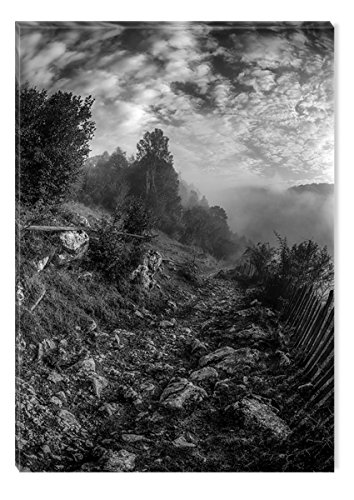 Startonight Canvas Wall Art Black and White Abstract Up and Down Country Alley Landscape, Dual View Surprise Artwork Modern Framed Ready to Hang Wall Art 100% Original Art Painting 23.62 X 35.43 inch by Startonight
