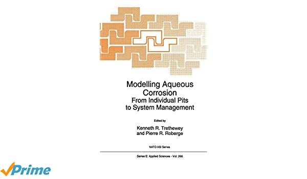 Modelling Aqueous Corrosion: From Individual Pits to System Management