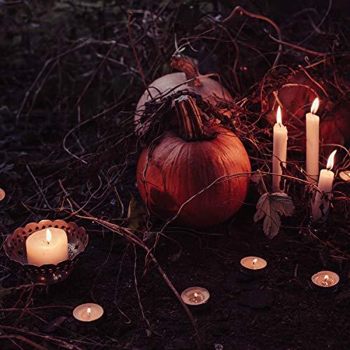 Best Halloween Scares 2019 (Scare Alley)