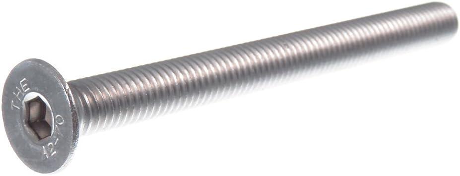 ISO 14581 10 tornillos avellanados con hex/ágono interior DIN 965TX acero inoxidable A2