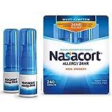 Nasacort Allergy 24HR Nasal Spray