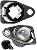 APDTY 104072 License Plate Lamp Light Bulb Lens Cover Fits 2005-2007 Ford Freestyle 2004-2007 Ford Freestar or Mercury Monterey (Replaces 5F1Z13550AA)