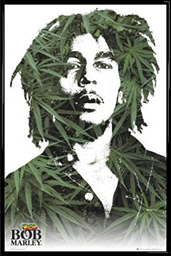 Amazon.com: Bob Marley Poster and Frame (Plastic) - Leaves (36 x 24 ...