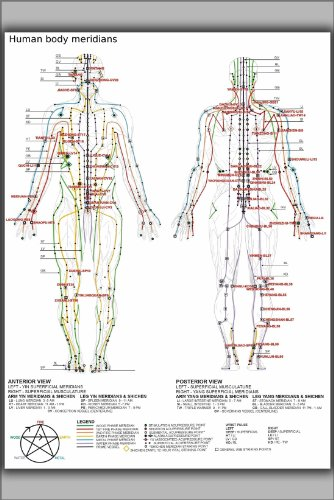 Poster - Chinese or Human Body Meridians for Martial Arts & Medicine