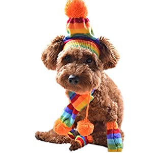 Alfie Pet by Petoga Couture - Jerry Winter Scarf, Hat and Leg Warmers Set for Dogs and Cats - Pattern: Rainbow, Size: Small