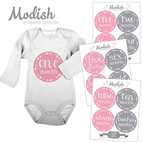 Baby Month Milestone Stickers  Purple Arrows