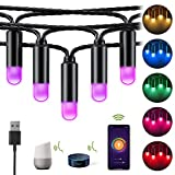 Marvee Smart LED Outdoor String Lights, WiFi RGB Color Changing String Lights Waterproof with APP, Support Alexa/Google Home, 38Ft 40LED Decorative Lights for Patio Party Wedding Christmas Tree,USB