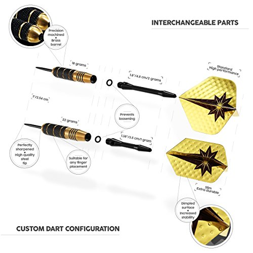 Review Professional Darts Set –
