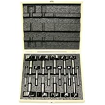Freud FB-100 16-Piece Diablo Forstner Drill Bit Set