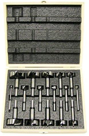Freud FB-100 16-Piece Diablo Forstner Drill Bit Set