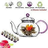 Tea Beyond Tea Set Teapot and Flowering Tea Set (20 oz Pink Detox 12cts)