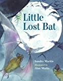 Little Lost Bat, Sandra Markle, 157091656X