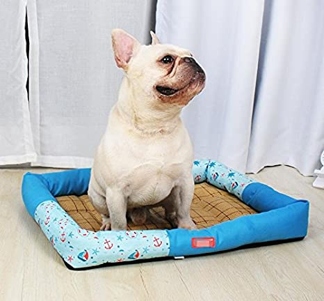 Keyi le Muy cálido Oxford Impermeable Perro Cama Mascota Perro Gato Verano Dormir Estera (Azul