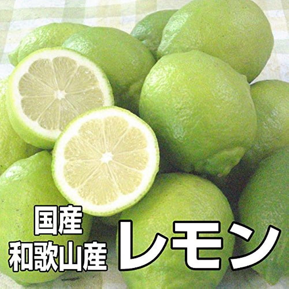 気候細部ガレージ宮古島産有機肥料栽培、ノーワックスグリーンレモン約1kg
