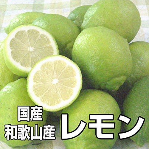 国産(和歌山県産)レモン/グリーンレモン 1kg 少し訳あり ノーワックス