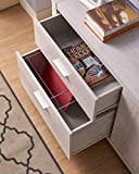 Articulus File Cabinet Printer Stand Office