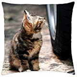"""iRocket - Kit and Tire - Throw Pillow Cover (18"""" x 18"""")"""
