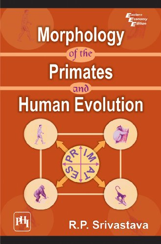 Morphology of the Primates and Human Evolution