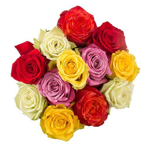 Anniversary Lily Bouquet (Flowers for delivery on Amazon Bouquet of 12 MULTICOLOR CARNIVAL Fresh Roses Delivered with Free Flower Food Packet. Long Stem Roses. Guaranteed Best Flower Gift for Birthday Valentines Mothers)