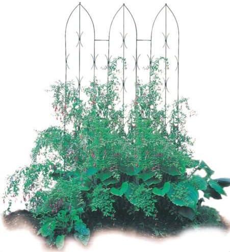 Poppy Forge calidad escalada en gótico jardín pantallas ...