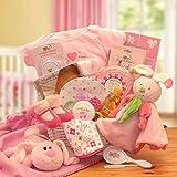 Bunny Hug for the New Baby Girl Gift Basket
