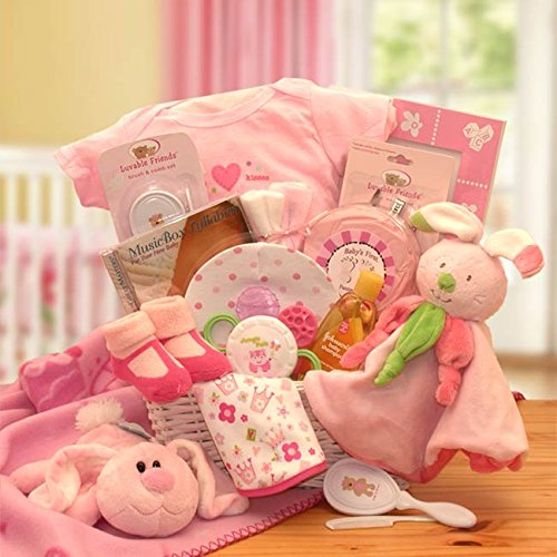 Bunny Hug for the New Baby Girl Gift Basket (Bath Baby New Gift Basket)
