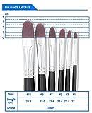 Round Pointed Tip Brushes, CBTONE 6pcs Nylon