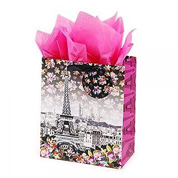 Amazon.com: icoloris grande Meet Me en París bolsas de ...