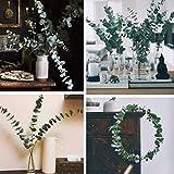 Belle Fleur Preserved Fresh Eucalyptus Branches