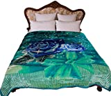 STI Heavy Thick Plush Korean Style Luxury Super Soft Mink Blanket ,9 Pounds Two Ply Reversible Throw Blankets, King Size, Turquoise Navy Blue Floral