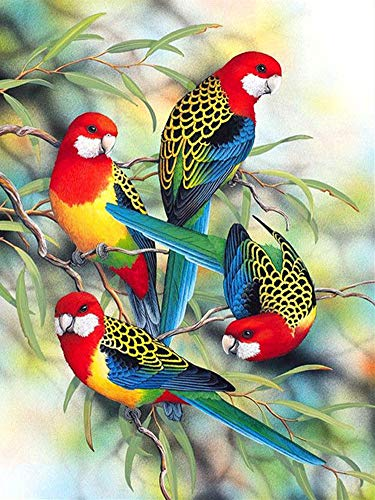 New 5D Diamond Painting Kits for Adults Kids, Awesocrafts Colorful Parrots Birds Partial Drill DIY Diamond Art Embroidery Paint by Numbers with Diamonds (Parrot)]()