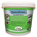 Gastropower