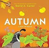Autumn: A Pop-Up Book (Seasons Pop-up)
