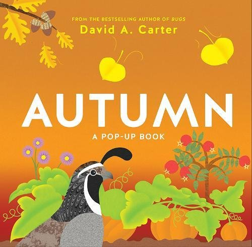 Autumn: A Pop-Up Book (Seasons Pop-up)