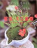 苔玉・ミニ盆栽―おしゃれでかわいい緑のインテリア