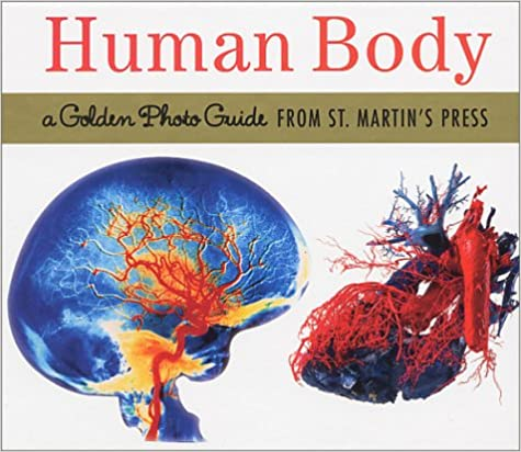 Read The Human Body: A Golden Photo Guide from St. Martin's Press PDF, azw (Kindle)