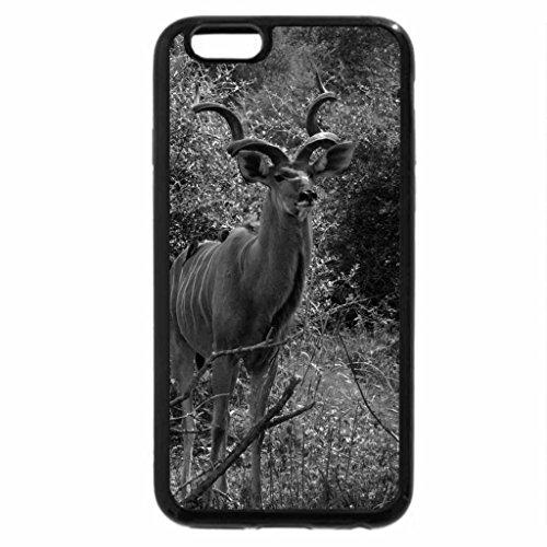 iPhone 6S Plus Case, iPhone 6 Plus Case (Black & White) - KUDU BULL