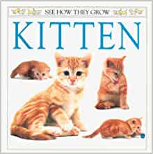Amazon.com: Kitten (See How They Grow) (9780789476579 ...